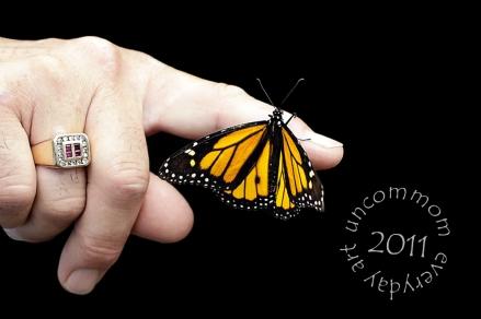 SA B1103M Monarch
