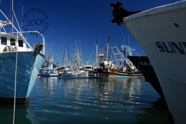 SA L0601B Blue_ fishing fleet