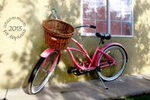 SA S1302B Pink Bicycle 2