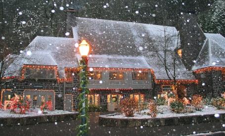 SA C0701 Snowy Lodge 1000